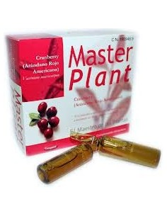 MASTER PLANT CRANBERRY