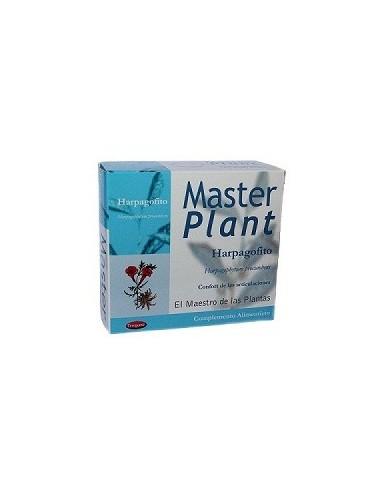 MASTER PLANT HARPAGOFITO